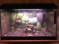 Fish tank Light Glo