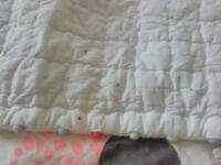 Little white company and Zara bedding and bumper