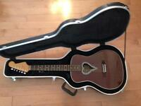 6 string Acoustic Fender Alkaline Trio Guitar