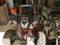 Bashan 250cc water cooled quad
