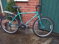 Raleigh Ascender Gents 19inch Mountain Bike
