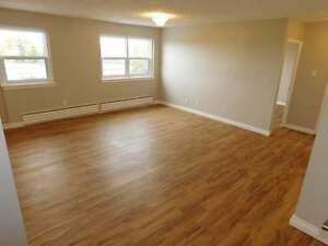 Pine Allard Properties  - Bachelor 94 307 Apartment for Rent