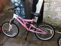 2 girls mountain bikes
