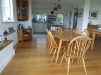 Ercol Dining Table, Chairs and Extension Table. Original 1950's light Elm, Lovely!