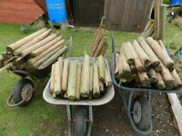 Tanalised Garden Stakes/Posts