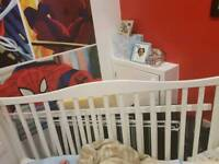 Baby cot... turns to cot bed
