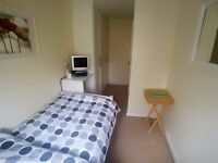 Large single room in Leytonstone - 13 mins from LEYTON tube Ideal for professionals!