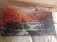 Autumn forest canvass wall picture