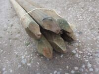 Timber Fencing / Tree Stake (H)1800mm (W)50mm (Surplus)