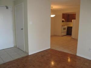 Beautiful and Affordable 1-3 Bedroom Suites Available Kitchener / Waterloo Kitchener Area image 9