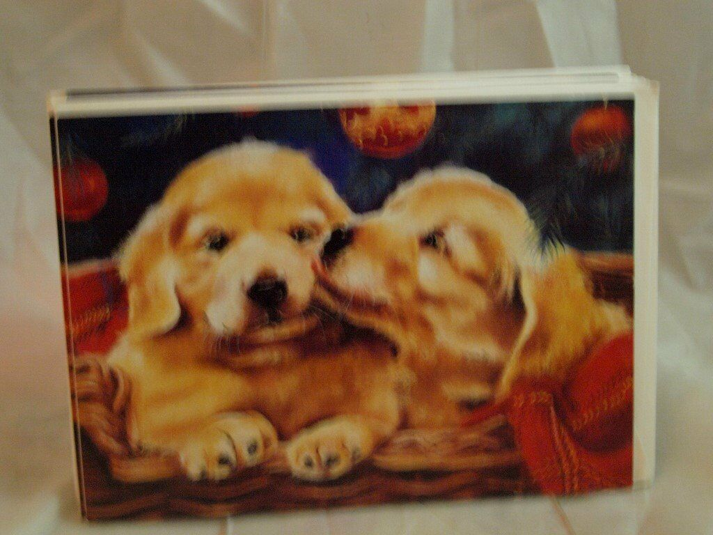 6 Dogs Christmas Cards | in Ashford, Kent | Gumtree
