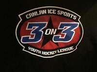 Ice/roller hockey jersey