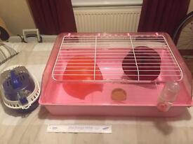 Rat, Guinea Pig or Degu cage