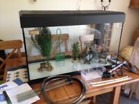 Fluval Roma 125 Litre Aquarium With Heater, Lighting, Filter etc.