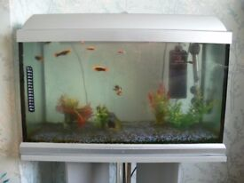 Tropical Fish Aquarium With Stand and fish