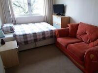Double room to rent in quiet friendly flat :)