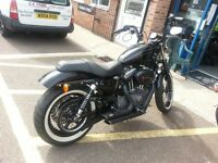 Harley Davidson Nightster Bobber. 2009 Mildly customised. Vance and Hines exhaust