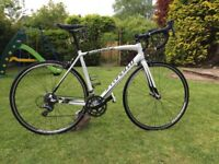 2015 Specialized Allez road bike - 56cm, white, great condition