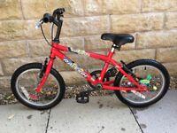 Raleigh Gecko childs bike