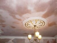 Dimov Plastering Painting and Decorating