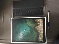 iPad Pro 12.9 256gb Cellular + EXTRAS