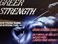 Greer Strength online personal training and nutritional planning.