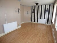 Deckham,Gateshead.2 Bed Immaculate upper Flat. Huge Lounge.No bond! Dss welcome!