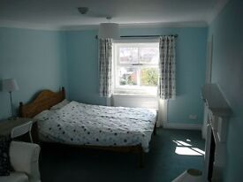 Rooms to rent for professional or graduate