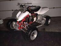 Cobra ECX Auto 50cc race quad