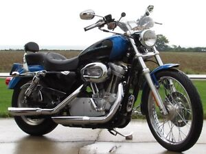 2004 harley-davidson XL883C Custom   Stage 1 Exhaust and Progres London Ontario image 1