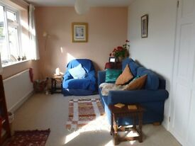 Lovely light quiet one bed + house with garden and parking space available for six weeks