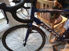 Carrera Zelous mountain bike