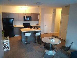 *INCENTIVES* Brand New 2 Bd w/ Suite Laundry & A/C Fort Sask
