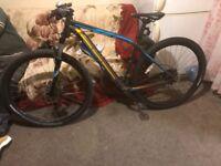Rockhopper Specialized bike