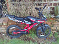 FLIGHT MOTO GP ONE OF MANY QUALITY BICYCLES FOR SALE