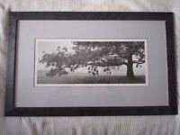 3 Stunning large pictures/prints bought from John Lewis costing over £200