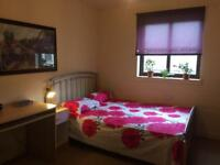 Double room to rent ASAP in spacious, well appointed 2nd floor 2 bedroom flat on Medowbank . EH88HS