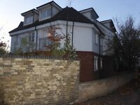Refurbished 1 Bedroom flat with Garden in Croydon (WC) Universal Credit and DSS tenants are welcome