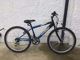 Mint Condition Child's Raleigh Gecko Bike Completely Unused