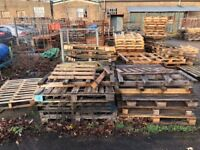 Pallets and wood, a whole yard full of it!