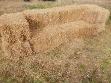 HAY BALES FOR PARTIES,FUNCTIONS,WEDDINGS,ETC. Londonderry Penrith Area Preview