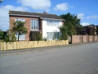 1 bedroom in shared house available near UEA