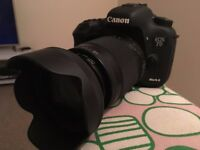 Canon EOS 7D Mark 11 with 18-300mm DC Macro lens