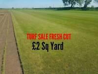TURF SALE Fresh cut