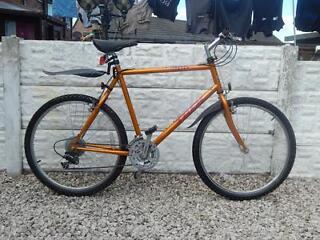 Mens trek mountain bike