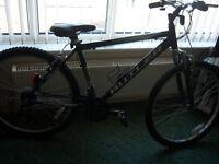 claud butler blackhawk mountain bike