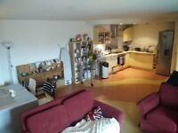 Very beautiful spacious double room ensuite in Waterloo area, a must see.