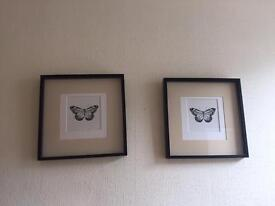 Matching framed butterfly prints