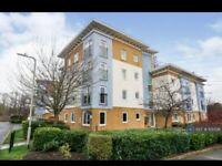 2 bedroom flat in Walden Court, Canterbury, CT2 (2 bed) (#1131339)