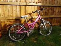 Girls Bicycle Raleigh Diva